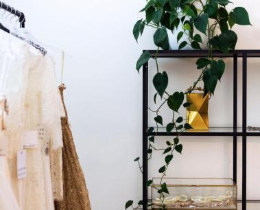 Shop cây online quận 4| Chất lượng, đẹp, giá rẻ TP.HCM- Cây yêu thương